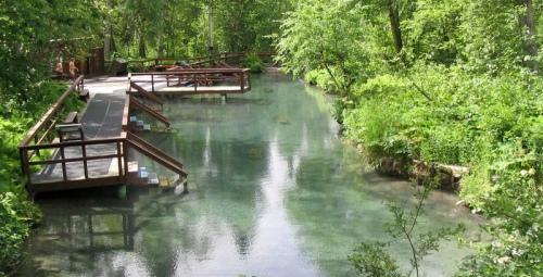 Liard Hot Springs 1